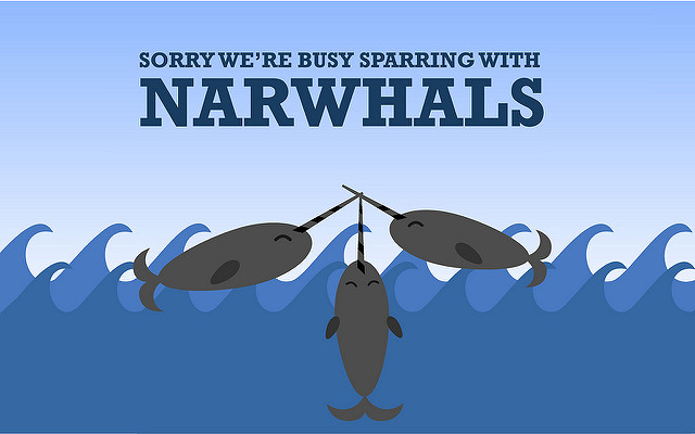 Sparring with narwhals