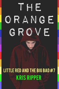 The Orange Grove Cover